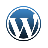 Top Web Design Firms WordPress